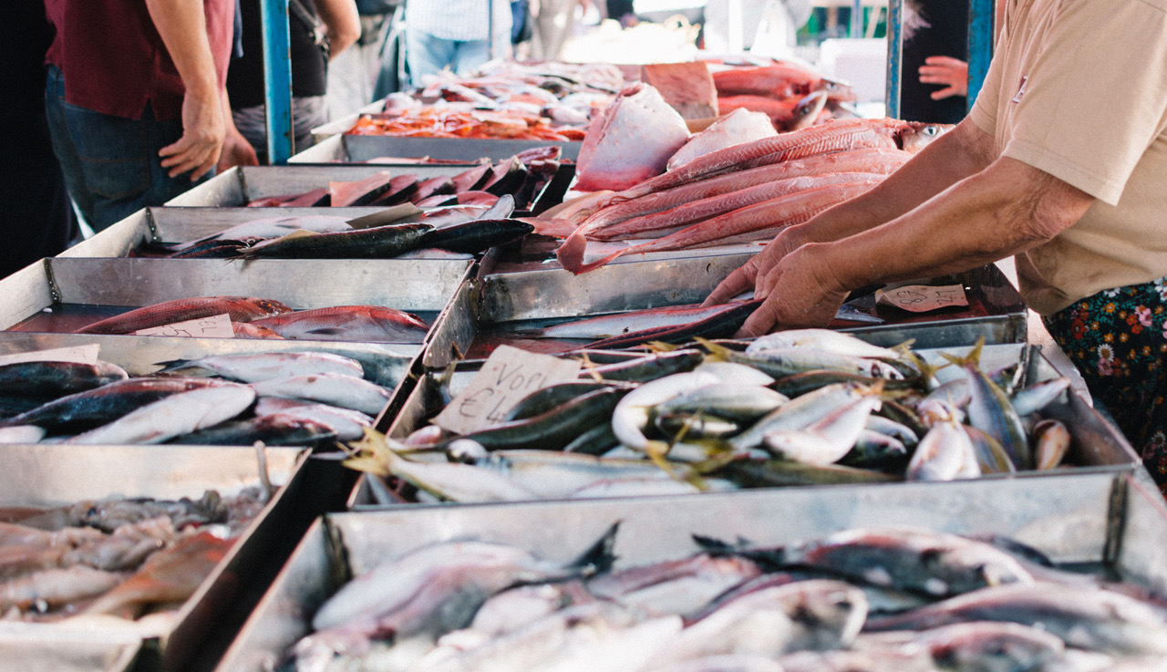 Shopping at fish market