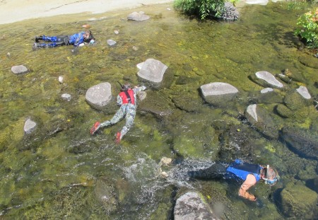 snorkeling in Big Chico Creek
